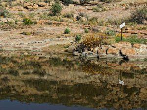 Namastat landscape dam